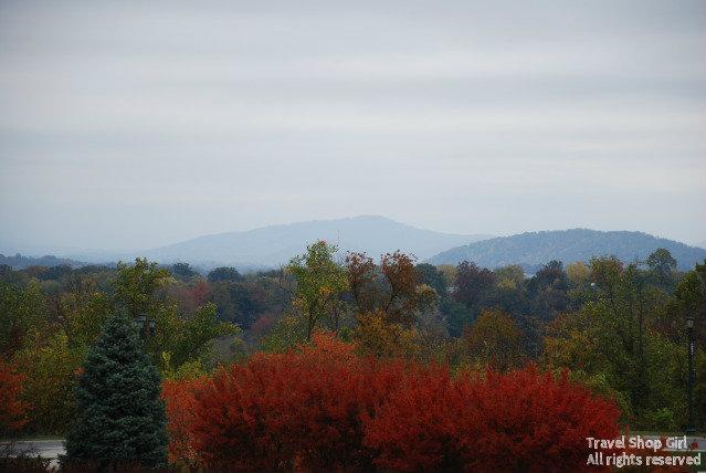 History, Vineyards, and Tubing in Lynchburg