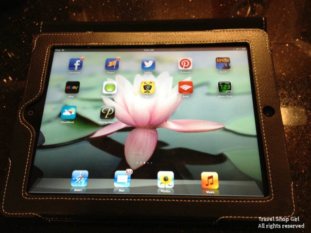 TheSnugg.com's iPad 3 case