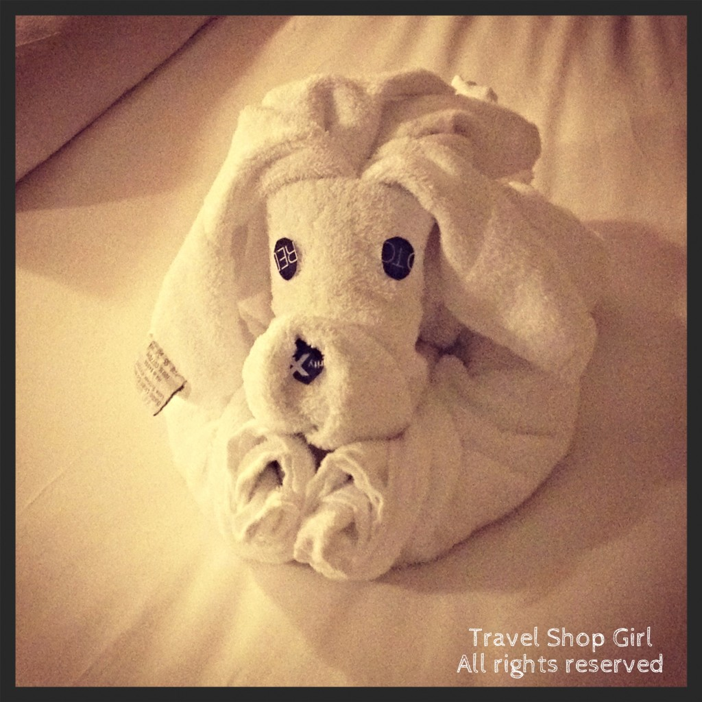 My Celebrity Cruises towel puppy