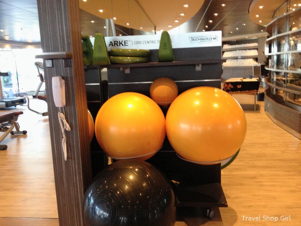 Technogym equipment, Bosu balls, and more