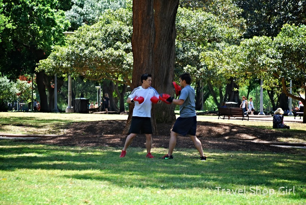 Sparring in Hyde Park