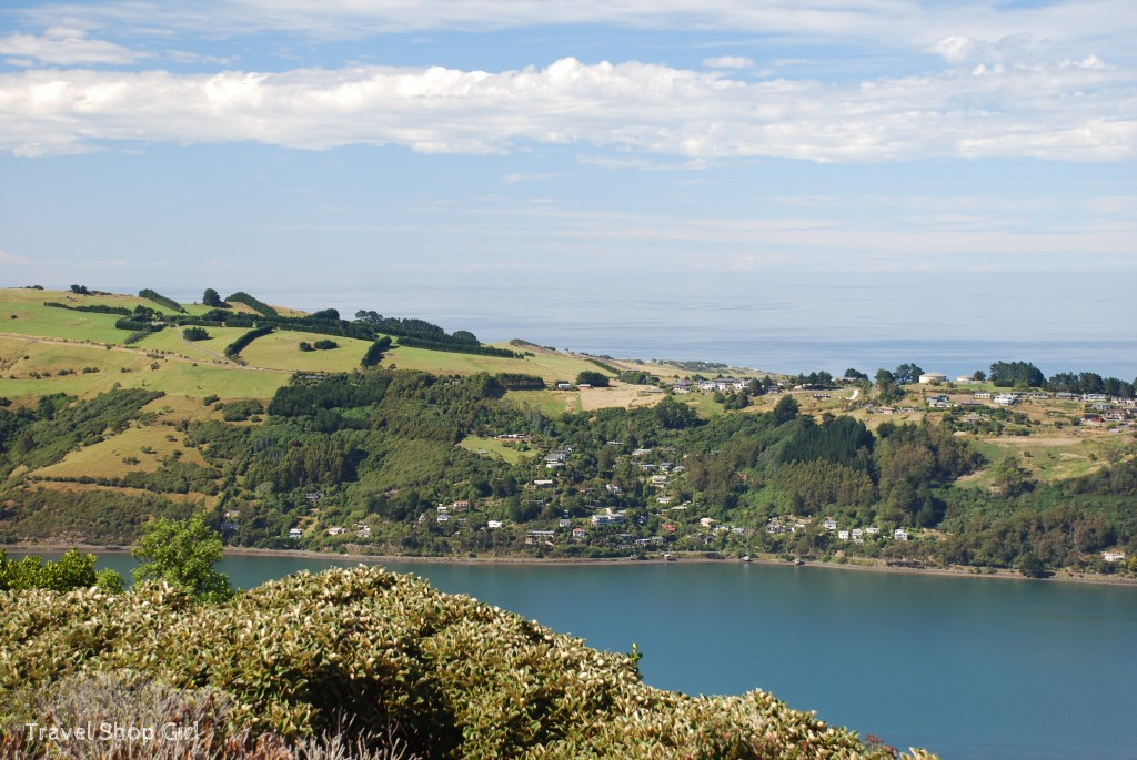 Trip up to Signal Hill, Dunedin